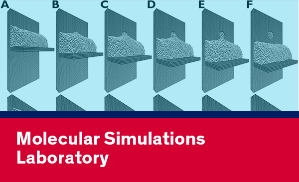 Molecular Simulations Lab